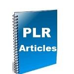 Auction Selling PLR Articles